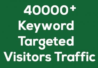 Over 40000 Niche targeted Website visitors TRAFFIC