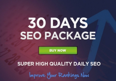 I will Provide  Monthly Seo Package Manually Submission