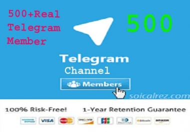 Get You High Quality 500 Telegram Channel Member in few hours