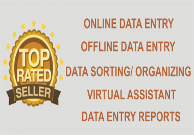I do 10 Pages Data Entry of any kind or any format