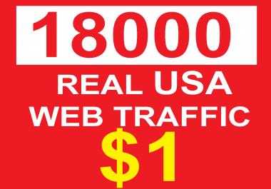 deliver 18000 safe usa web traffic real usa traffic