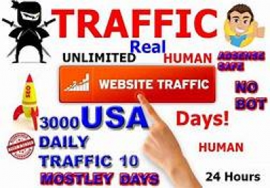 90000 + USA ORGANIC WEBSITE TRAFFIC TRACKABLE WITH GOOGLE ABSENCES