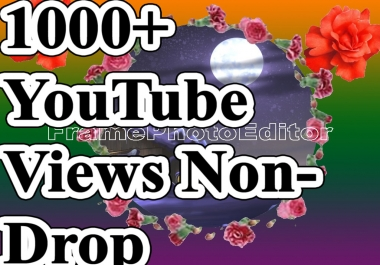 Fantastic offer 1000+  Video Views Non drop with super fast delivery