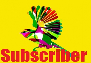 Live 300 YouTube Subscriber Only For
