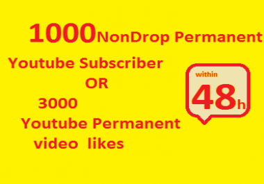 1000 Non drop fast Youtube Subscribers OR 3000 likes in just 12-48h