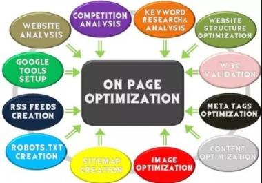 professionally perform On Page optimization SEO