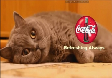 put your logo n text on my cat VIDEO funny