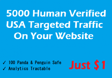 Get 20000 Human Verified Unique USA visitors on your website Fast and Safe