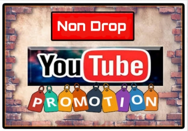 You tube Marketing Promotion with Non Drop and Guaranteed