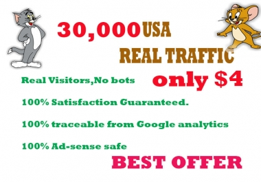 30,000 HUMAN TRAFFIC BY  Google,Twitter ,Youtube and any more to web site