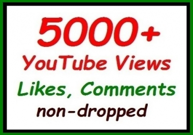 5000+ to 6000+ YouTube Vie ws fully safe ranking video, non-dropped guaranteed for