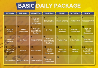 Manual and Unique 30 Days Basic SEO Package