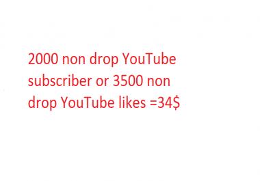 2000 non drop YouTube subscriber or 3500 non drop YouTube likes