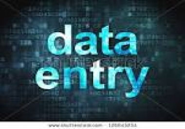 12 Pages data entry work