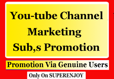 SEO for Youtube Promotion with choice extra service Shares