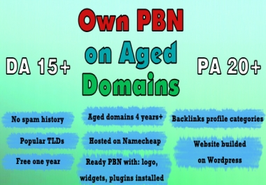 Prepare 1 PBN website for your OWN on aged domains with DA15+ PA20+ AGE 4+, Honest SEO Service