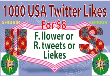 Give your 1000 USA Twitter Likes