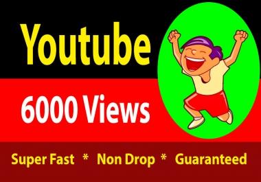 6000 High Quality Vieews Fully Safe Lifetime Guarantee