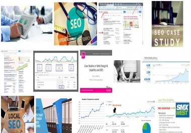 SEO case studies. The exact guide for your new website