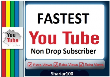 OFFER 300+ You+Tube Channel Non Drop Subscribes Or 100+ custom comments for You+Tube video high quality  fast sell