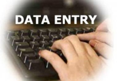 DATA ENTRY, Any Data Handling Work Or Data Editing Work