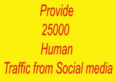 Provide 25000  Human Traffic from Social media