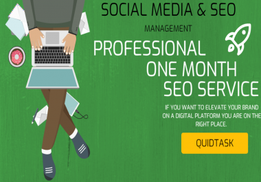 Professional Social Media and SEO Management for 1 month