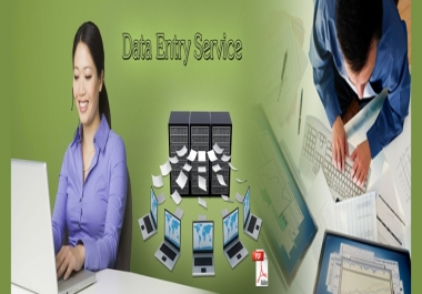 I Can Do Perfect Data Entry And Web Research