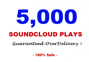 I Provide You 5000 Soundcloud Play in Your Track