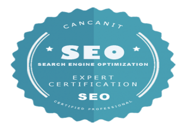 I do custom SEO services