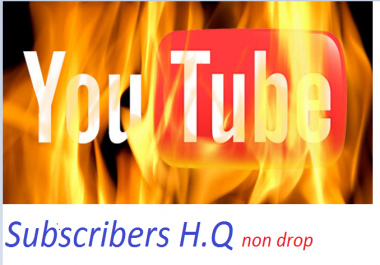3000 - 4000+ High Quality youtube views Fully Safe
