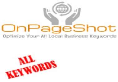 Keywords' Google Rank Report of OnPageShot Services Delivered