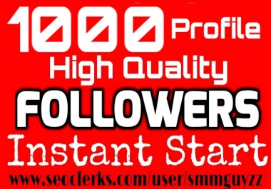 Add 1000 High Quality Fast Profile Followers to Your Account