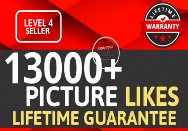 Add Fast 13000+ High Quality PHOTO Likes OR Views