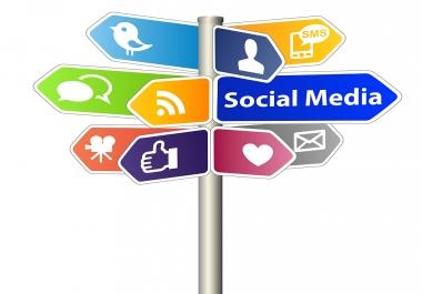 I will generate 1000 social media traffic from social media networks
