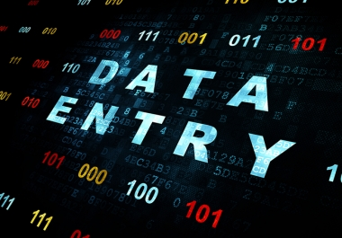 Instant Star data entry work word, excel, notepad anykind of  etc for $5
