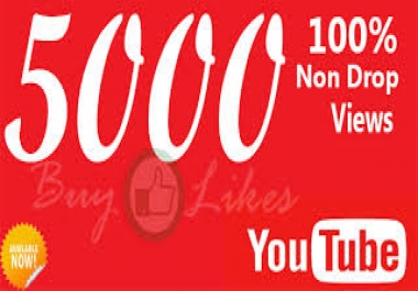 Provide Fast 5000+ Youtube Views with  50 Likes to your video within 2-3 hours