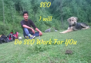 Do SEO service for you