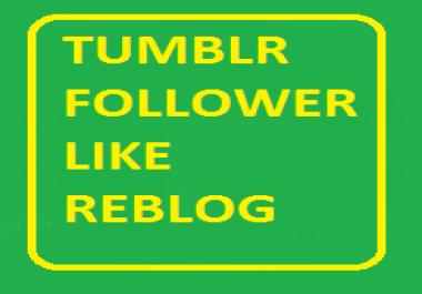 500+ High Quality & USA Based Tumblr Follower/Like/Reblog