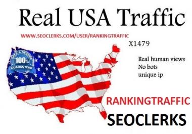 REAL MANULLY 300,000 USA TRAFFIC BY SOCIAL MEDIA