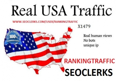 REAL MANULLY 400,000 USA TRAFFIC BY SOCIAL MEDIA