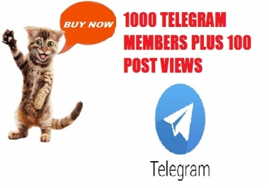 We WILL ADD 1,000 Members to your TELEGRAM CHANNEL PLUS 100 POST VIEWS