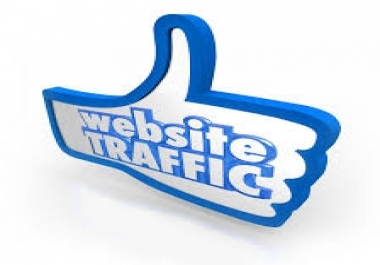 real and non drop 50k web traffic of the website