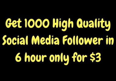 Get 1000 non drop follower your social media profile