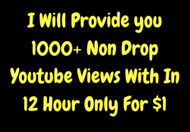 Get 1000+ youtube views with in 12 hour