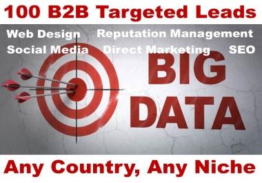 100 SEO Leads B2B Targeted Fresh Leads UK USA CANADA & Australia Any Niche
