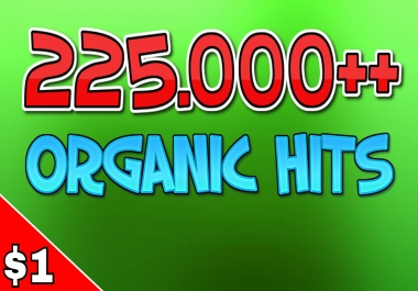 225.000++ ORGANIC HITS on a WEBSITE
