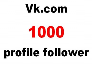 Will Increase Your 1000  Vk.com profile follower on social media Top Networks