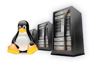 Linux Shared Hosting