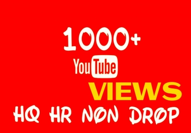 Deliver 1000+ HQ, HR, NON DROP YOUTUBE service
